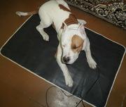 коврик для животных с электрообогревом